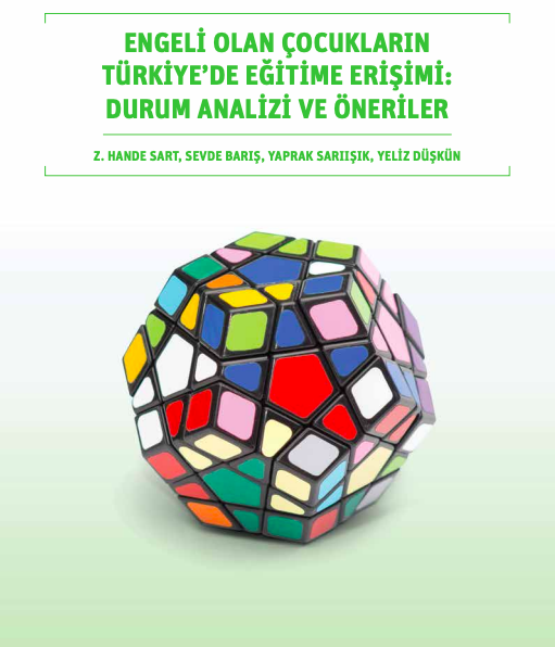 Engeli Olan Çocukların Türkiye'de Eğitime Erişimi: Durum Analizi ve Öneriler